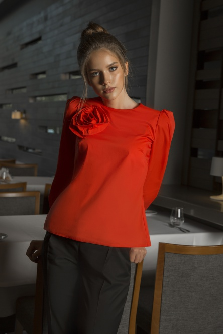 Blouse Elletto Life #3442 or
